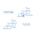 cortisol set stress hormone formula vector image