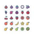 fruit thin line and color icons set vector image