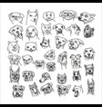hand drawn dogs head set isolated on white vector image vector image