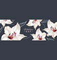 happy womens day horizontal banner with lily vector image vector image
