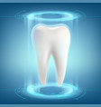 human tooth dental implant vector image vector image