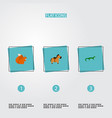 set of animal icons flat style symbols with gecko vector image