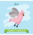 Bird forest animals vector image vector image