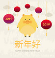 chinese new year 2019 year of pig chinese zodiac vector image