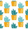 houseplants seamless pattern vector image vector image