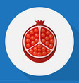 of berry symbol on pomegranate vector image