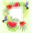 summer background with hummingbirds watermelon vector image