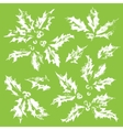 The collection of snow-covered holly leaves vector image vector image