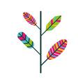 branch feathers retro vintage hippie vector image vector image