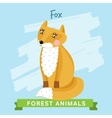 Fox forest animals vector image vector image