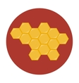 Honeycombs icon flat vector image vector image