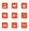 live asia icons set grunge style vector image vector image