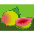 raw food vector image vector image