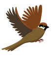 sparrow isolated on a white background graphics vector image vector image