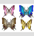 butterfly couples vector image vector image