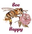 fashion bee be happy concept vector image vector image