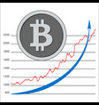 isolated crypto coin bitcoin - digital currency vector image