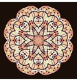 Kaleidoscopic unusual mandala of brown color vector image vector image