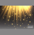 lighting effect golden lights enhance your vector image vector image