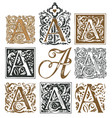 vintage initial letter a with baroque decorations vector image