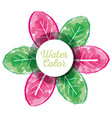beauty flower watercolor paint vector image