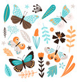 butterflies and floral elements isolated on vector image
