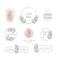 floral logo and emblem set with leaf vector image vector image