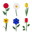 flowers flat icons vector image vector image