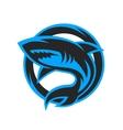 Shark sport logo emblem vector image vector image