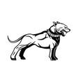 black sign dog breed pit bull terrier vector image
