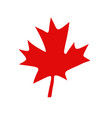 canadian red maple leaf vector image vector image