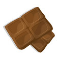 chocolate pieces cartoon vector image vector image