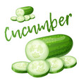 cucumber cartoon icon isolated vector image