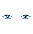 Pair of blue eyes vector image vector image
