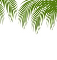 Palm leaf silhouettes background Tropical leaves vector image vector image
