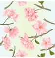 seamless texture blossoms sakura tvigs natural vector image