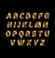 sketch alphabet - golden color letters are made vector image