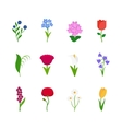 Spring flowers icons vector image