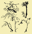 tree branch oriental style ink painting vector image vector image