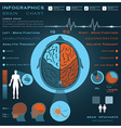 Brain Infographic Infocharts Health And Medical vector image