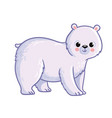 cute polar bear stands on a white background vector image