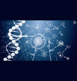 medicine and science background with dna molecule vector image