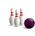 pin bowling white with two red bands vector image vector image