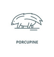 porcupine line icon linear concept vector image vector image