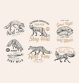 red fox badges set forest ginger wild animal vector image vector image
