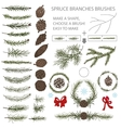 Spruce branches brushes set with Pine cones and vector image