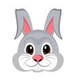 avatar of a rabbit vector image