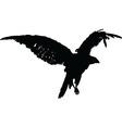 falcon - vector image