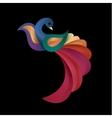 Peacock colored birds of a modern vector image