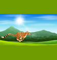 cartoon cheetah running in the jungle vector image